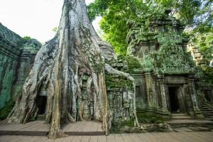 De Angkor Wat - Het grootste religieuze bouwwerk ter wereld
